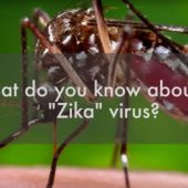 Zika Virus in Singapore | Street Talk | Happy-TV